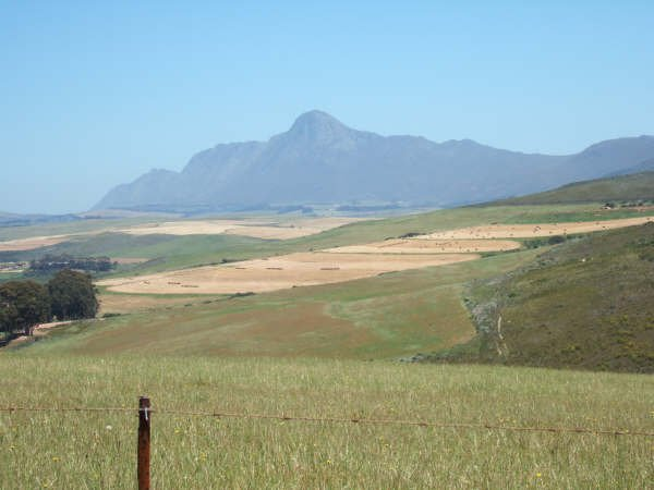 Hemel en Aarde Vineyards / real estate for sale